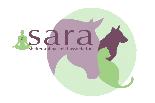 "<a href=""http://www.shelteranimalreikiassociation.org"" rel=""noopener"" target=""_blank"">Shelter Animal Reiki Association</a><a href=""http://www.shelteranimalreikiassociation.org"" rel=""noopener"" target=""_blank""></a>"
