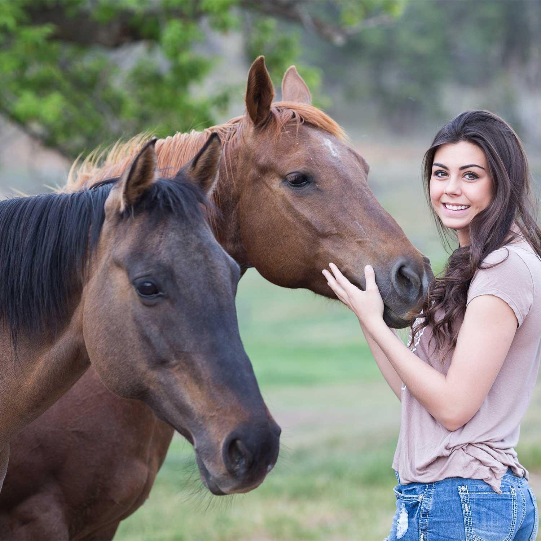 advanced-horse-reiki-classes